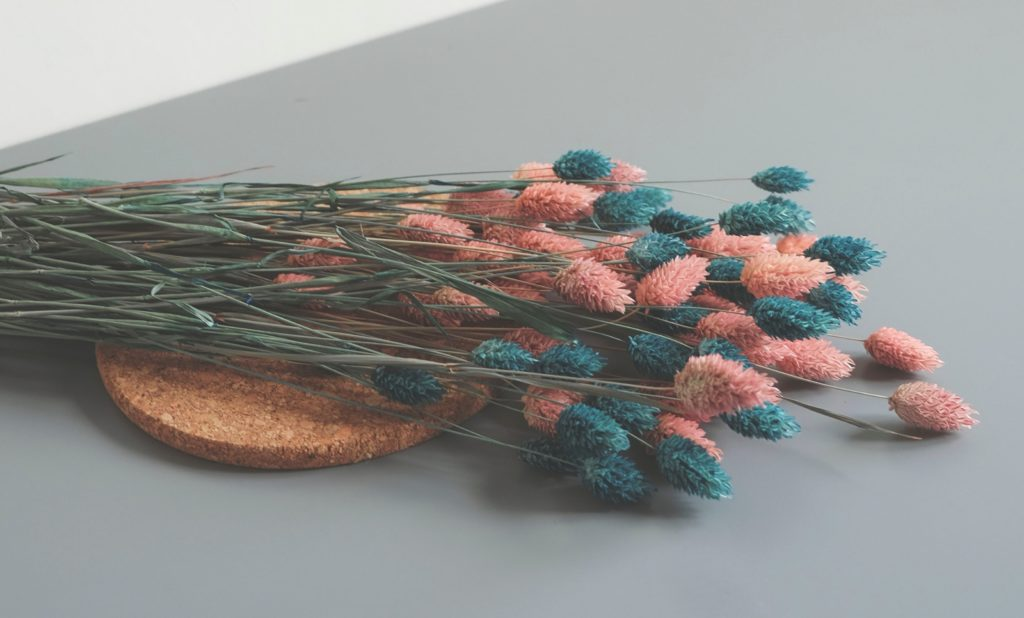 Untersetzer aus Kork mit Pflanzen darauf